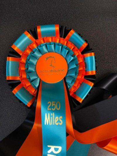 Miles Challenge Rosettes