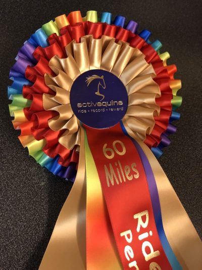 Ride Out 2020 Rosettes